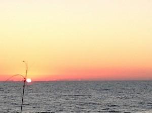 Savor the Sunsets!